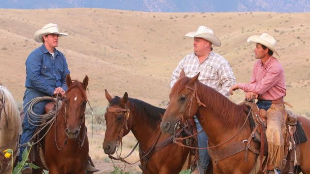 Cowboys rijden van paarden