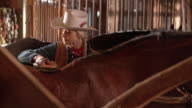 DS Cowgirl brushing her horse in the stall