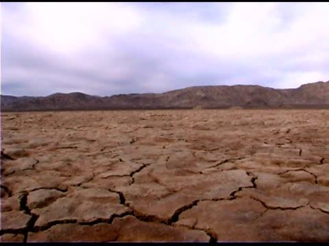 Cracked, dry desert landscape
