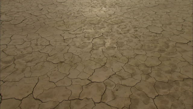 Cracked, dry mud characterizes a flat lake bed.