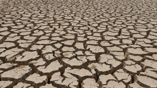 Bodentrockenheit geknackt.