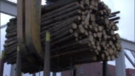 A crane claw lowers a bundle of logs at a pulp mill.
