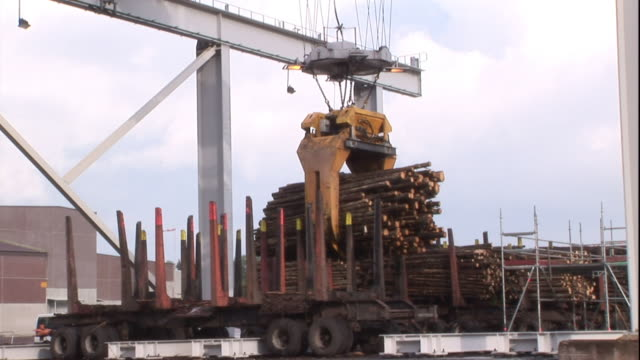 A crane lifts and carries logs.