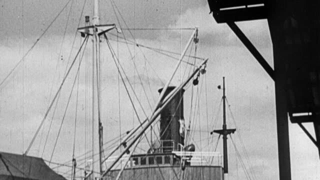 MONTAGE Crane loading lumber onto docked ship / United Kingdom