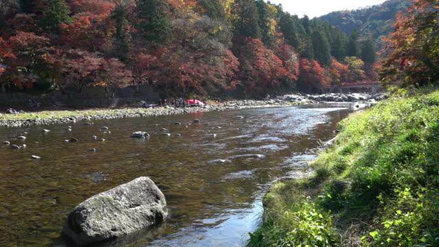 Crane shot: korankei Forest park with Autumn Red Leave Nagoya Japan