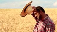 Crane Shot Of Farmer In The Wheat Field