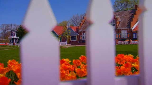Crane shot of tulips to Windmill Island