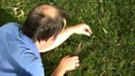 crazy man cutting grass with scissors