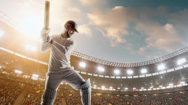 Cricket player on the professional cricket stadium