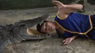 Crocodile wrestlers perform stunts during a show at the Samphran Elephant Ground Zoo in Bangkok
