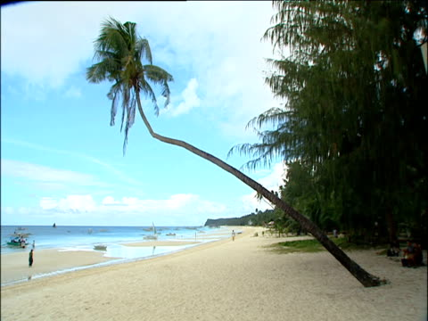 Crooked palm tree against blue sky leaning over pale sandy beach towards sea people walking on beach Philippines