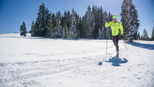 Cross country skier in winter landscape on beautiful sunny day