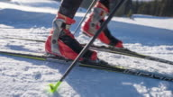 Cross country skier walking to his skis, strapping them on