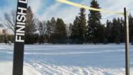 Cross country skiing 8