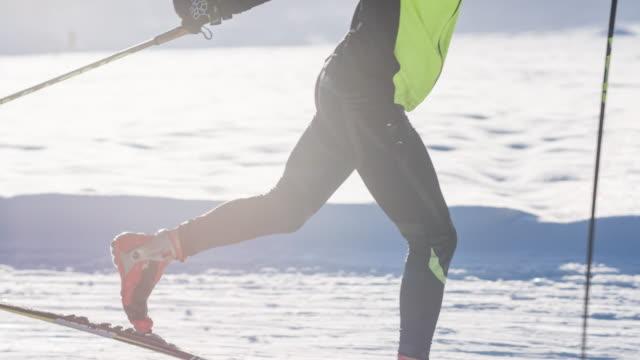 Cross country skiing in idyllic winter landscape