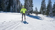 Cross country skiing on a sunny winter day