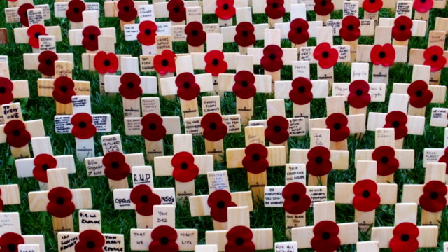 Crosses of Remembrance and bearing the names of fallen soldiers and poppies adorn the Field of Remembrance at the National Memorial Arboretum on...