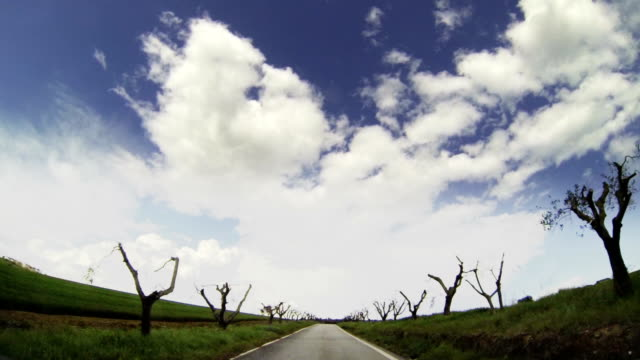 Crossing a country road, beautiful landscape