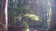 Crossing the Bridge in sunlight (slow motion)