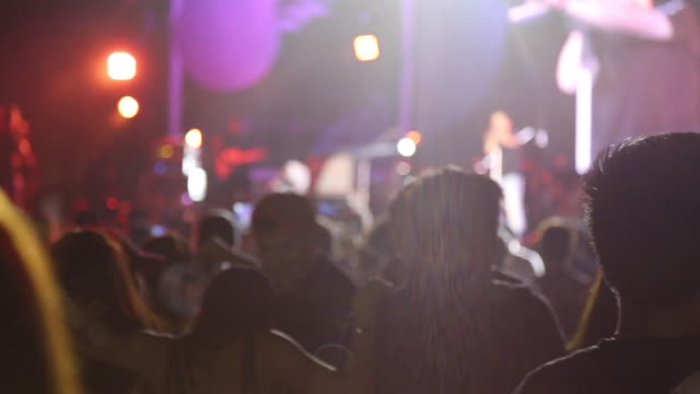 Crowd people dancing in outdoor concert