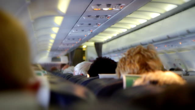 Crowded Aeroplane Interior. HD