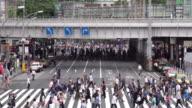 Crowds People Walking on a Crosswalk