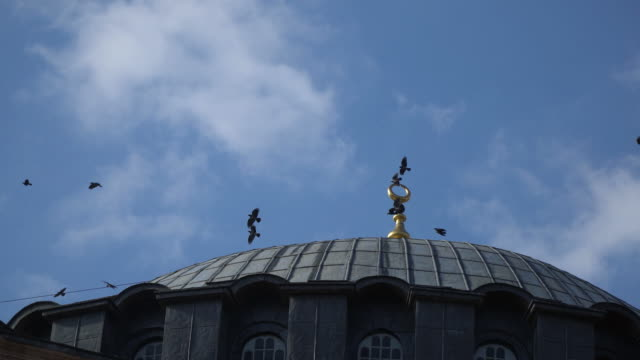 Crows Are Flying Over The Dome Of Hagia Sophia