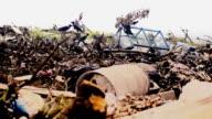 Crows on garbage dump