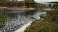 Cuarenta y cinco poblaciones a las orillas del rio Lempa que cruza Guatemala Honduras y El Salvador se han unido para combatir la contaminacion...