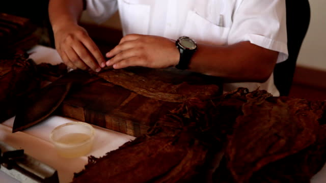 Cuban Cigar Rolling and Cutting 02