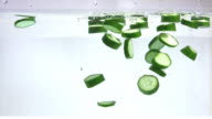 Cucumber in the water