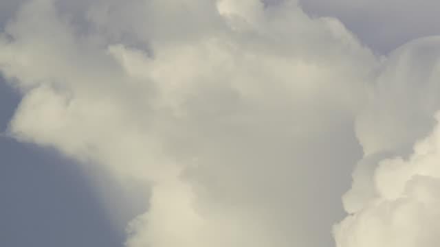 T/L MS Cumulonimbus thunderstorm billowing upward / Darwin, Northern Territory, Australia