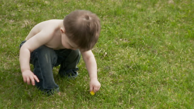 Curious little boy