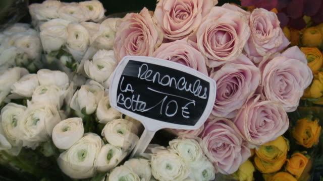 (HD1080i) valuta: Rose prezzo in euro
