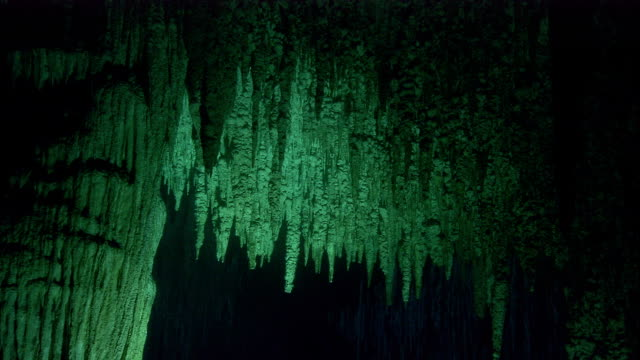 A curtain of stalactites characterizes a cenote cave in Yucatan, Mexico. Available in HD.