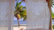 Curtains hang around a hut on a beach. Available in HD.