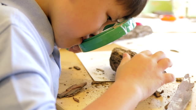 Cute Asian private elementary school student studying nature with magnifying glass in science classroom