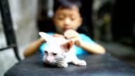 Cute children and cat