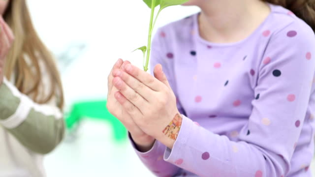 HD: Cute Girl Holding Baby Plant with ground.