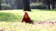 Cute little baby crawling in a park