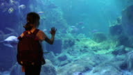 Cute little girl looking at the fish in a big aquarium