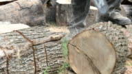 Cutting log with a chainsaw