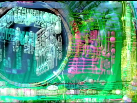 Cyber Bubble Land
