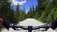 POV Cycling Downhill A High Mountain Road