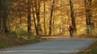 HD: Cycling In Colorful Autumn Forest