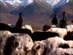 Darhad nomads begin winter migration Darhad Valley Mongolia