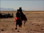 Darhad tribesman struggles to regain control of horse Darhad Valley Mongolia