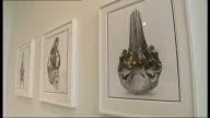 David Bailey interview Photographs of animal skull Bronzed animal skull Sculpture of skull on chair Bronze skull sculpture