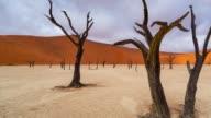 Deadvlei in Namib-Naukluft Park