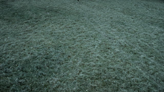 WS HA Death figure on horseback chasing woman running through meadow, Morrisville, Vermont, USA